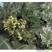 Agrosol-talajtakaró