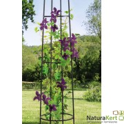 Növényfuttató Obelisk